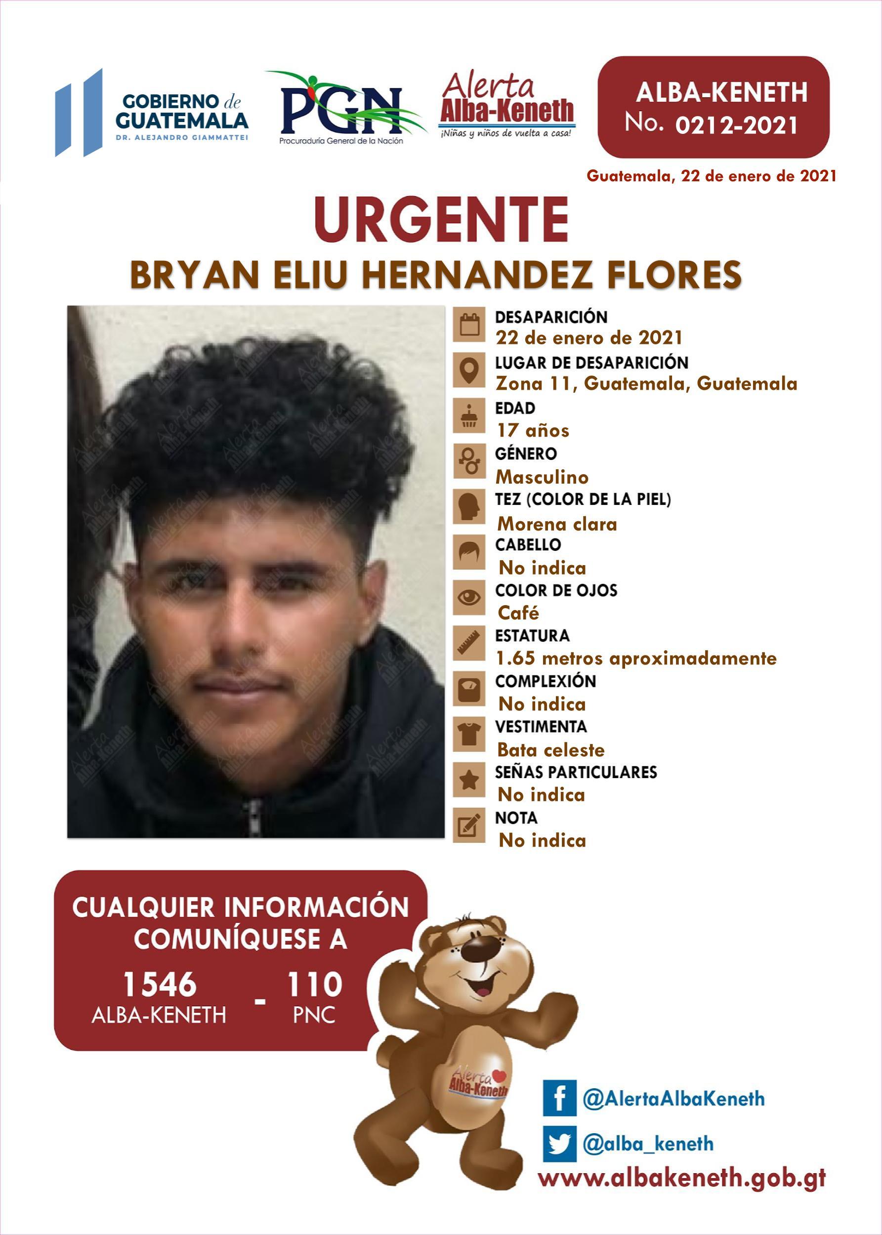 Bryan Eliu Hernández Flores