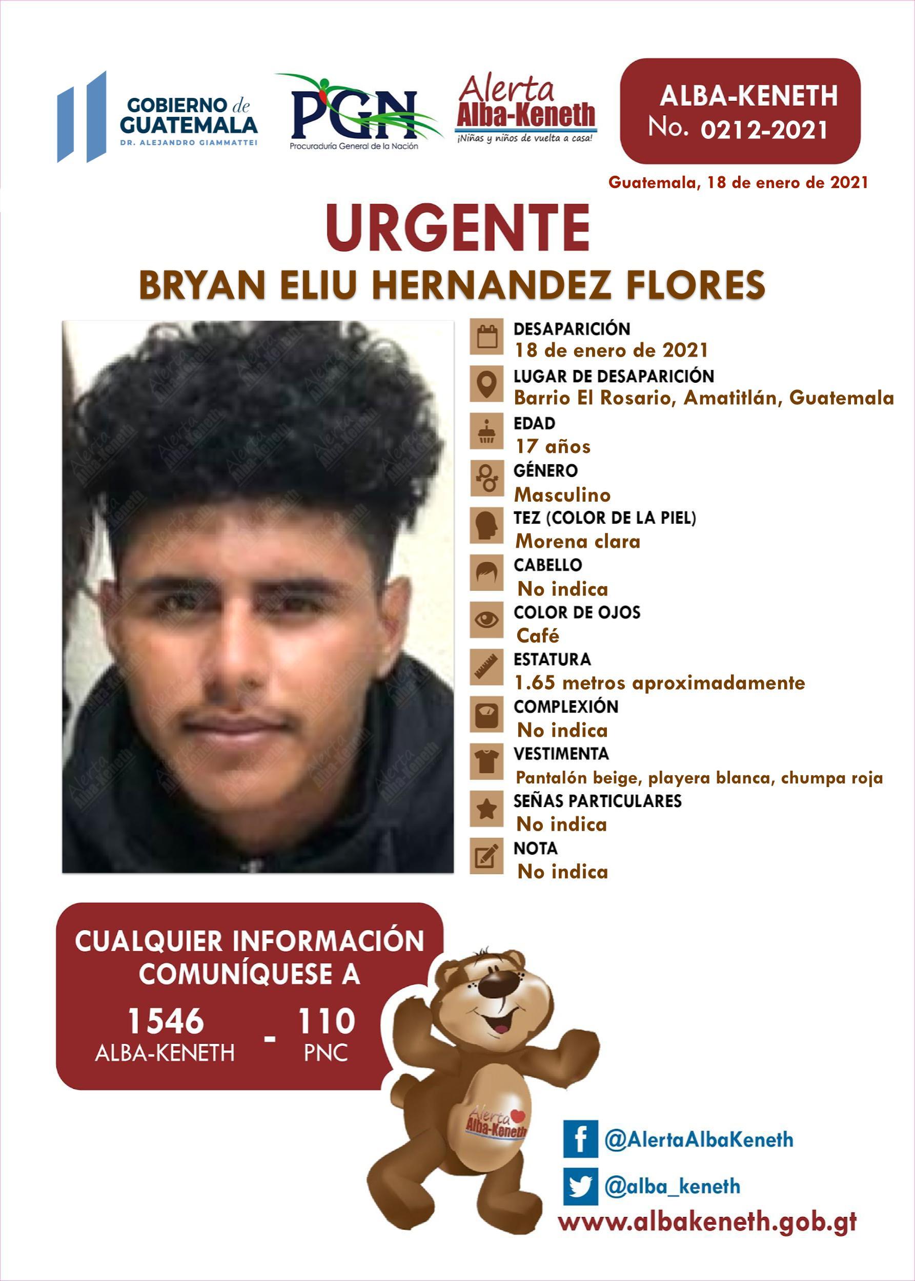 Bryan Eliy Hernandez Flores