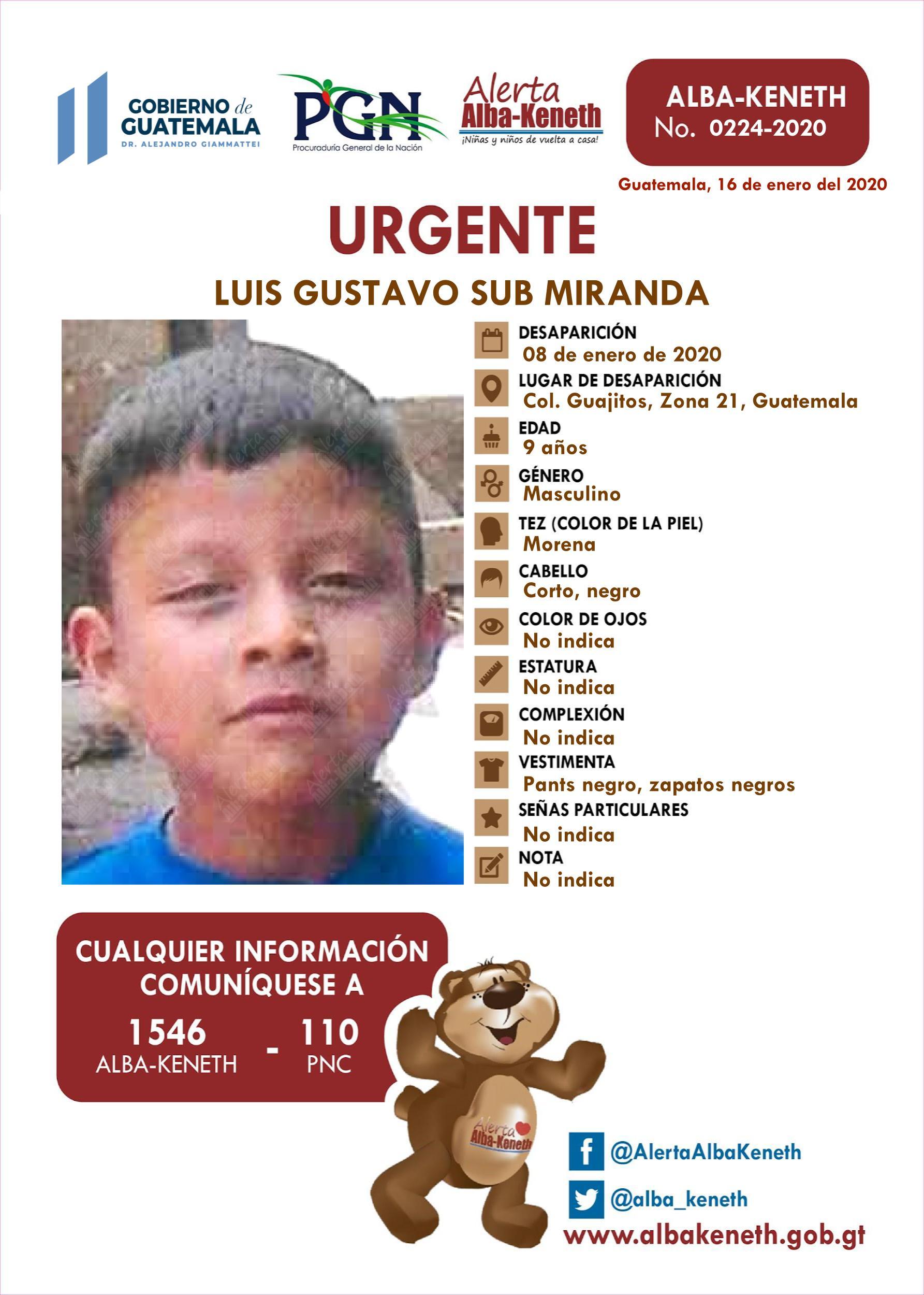 Luis Gustavo Sub Miranda