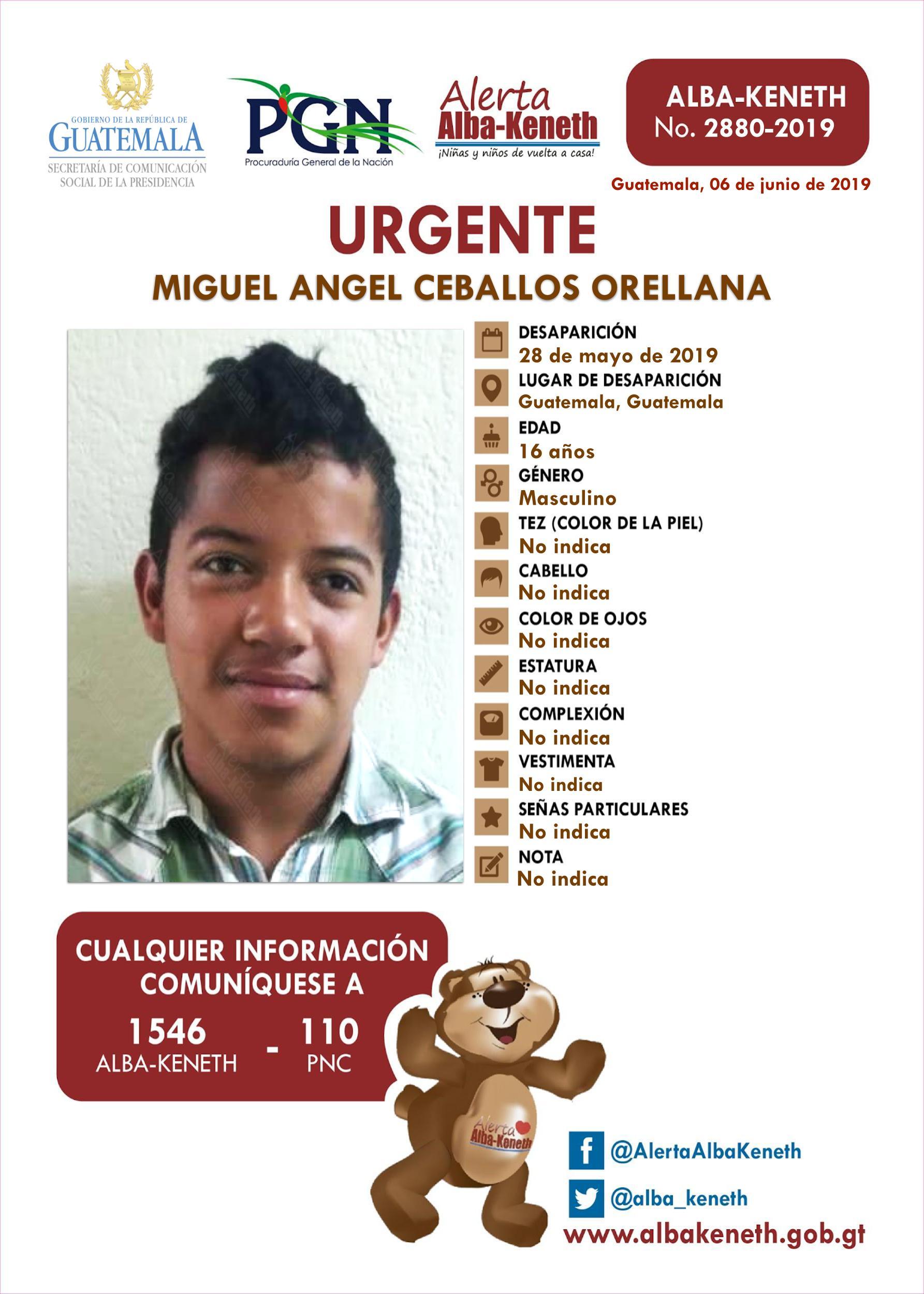 Miguel Angel Ceballos Orellana