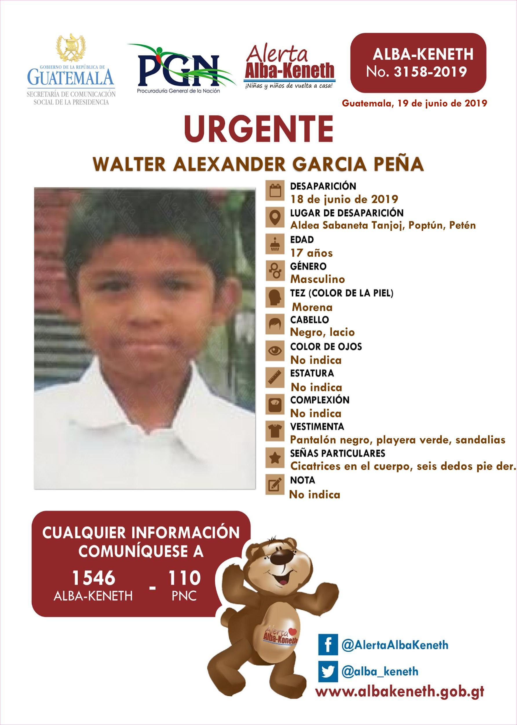 Walter Alexander Garcia Peña