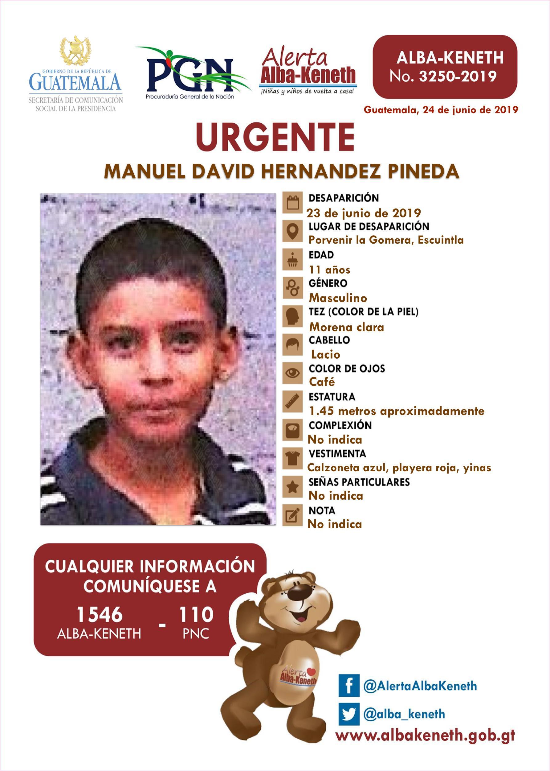 Manuel David Hernandez Pineda