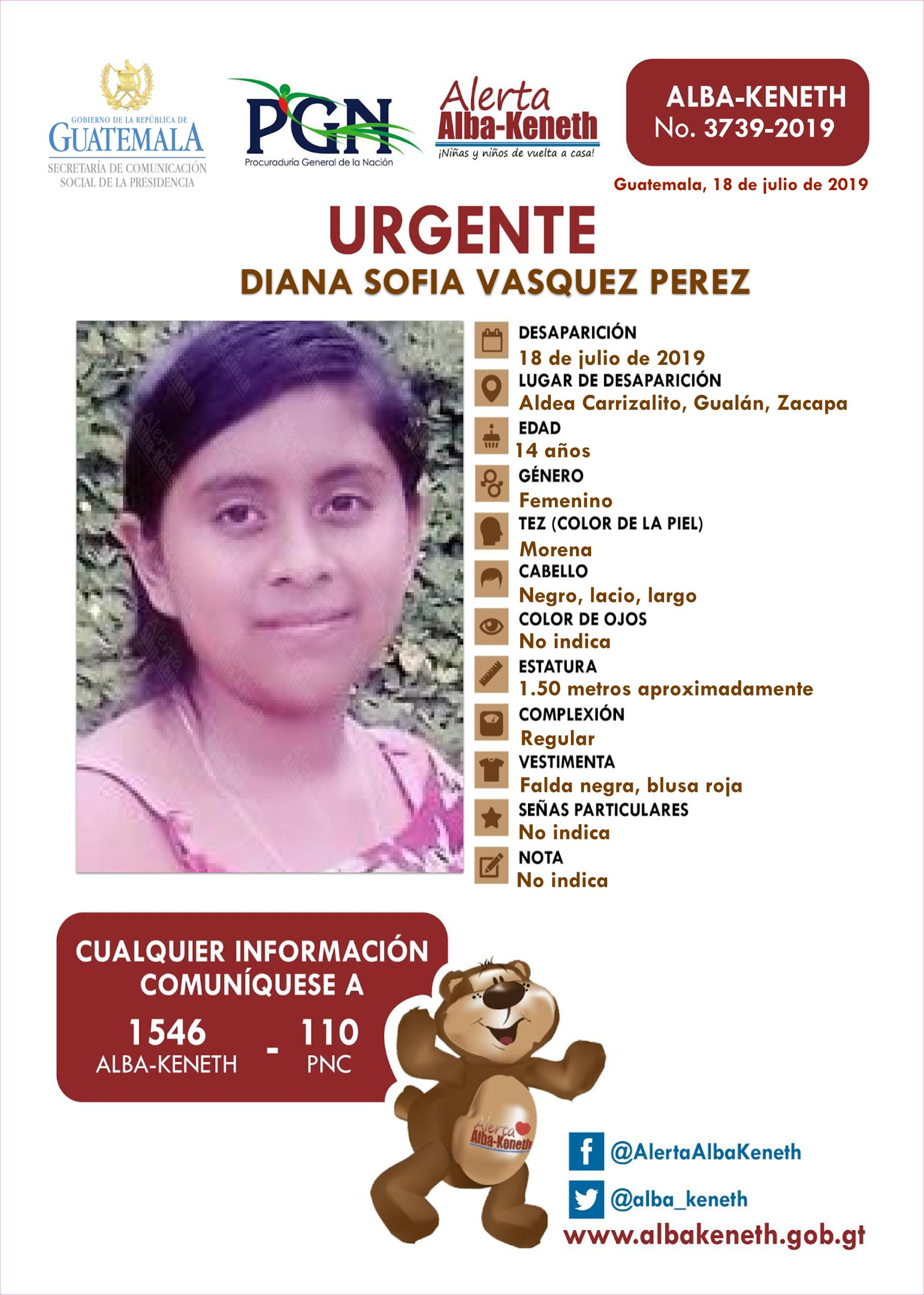Diana Sofia Vasquez Perez