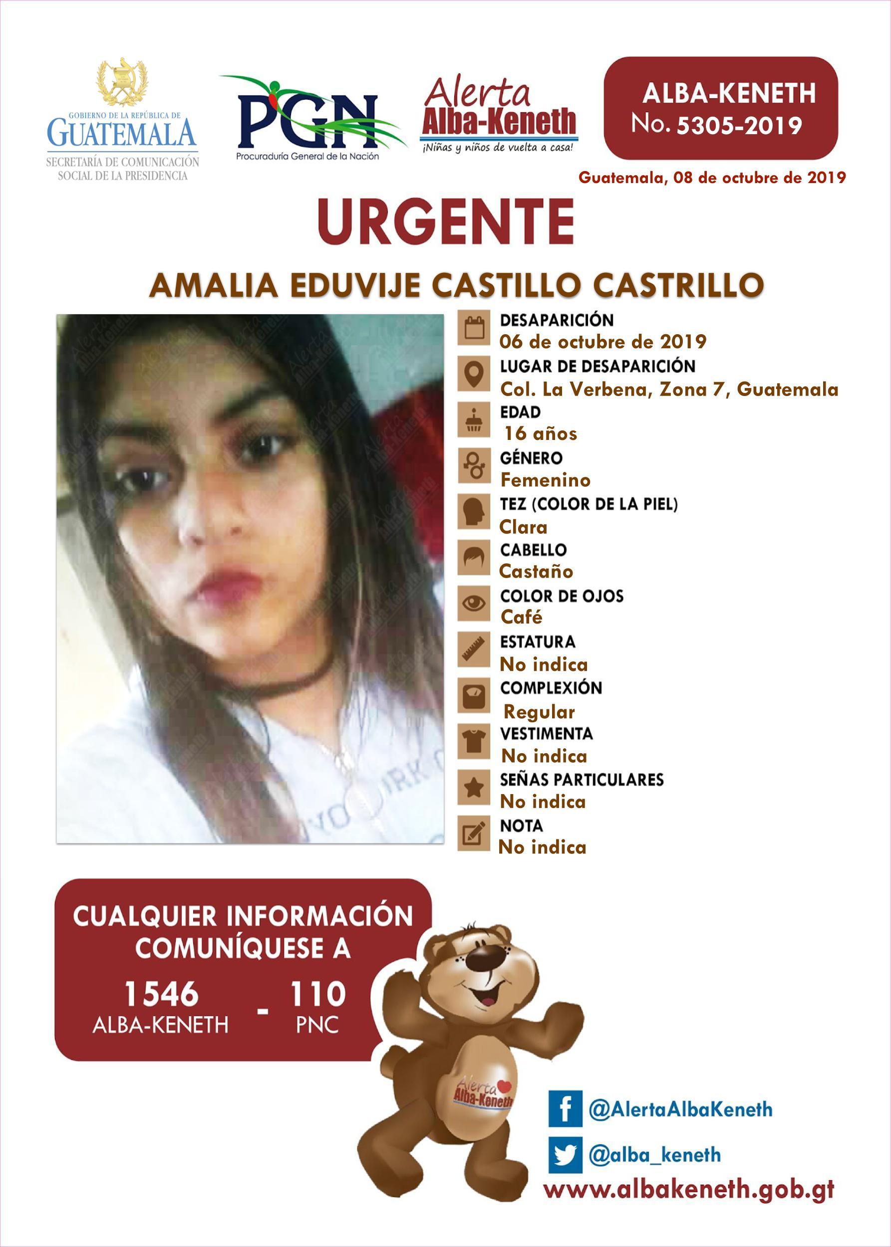 Amalia Eduvije Castillo Castrillo